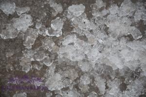 ICE-19